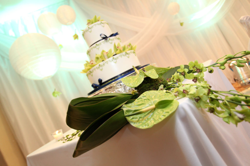Wedding Reception Quinceanera ADES